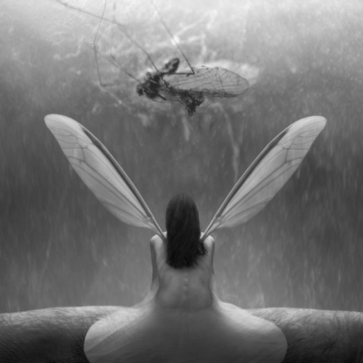 Photograph by Darius Klimezak
